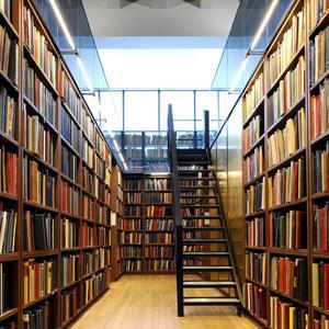 Библиотеки Хворостянки